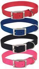 "COASTAL 2 Ply Dog Collar - 4 colors - all sizes - Double ply 1"" nylon web series"