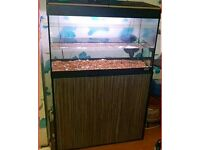 Fluval Fishtank With storage cupboard