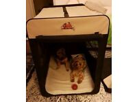 XXL Dog Crate and Bag