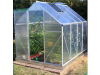 GREENHOUSE EX DISPLAY POLYCARBONATE HINGED DOOR