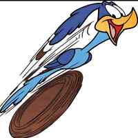Road-Runner Delivery, Courier, and Moving