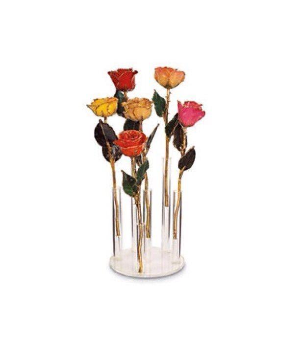 "Set of 12 24K YELLOW GOLD DIPPED ROSES  Real Long Stem Roses 12"" Gift Box Love"