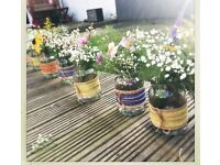 Wedding decorations - job lot of jars / vases / table centres