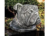 Bulldog head concrete