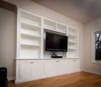 Carpenter Custom Built-in Closet Media Unit Storage Mantle
