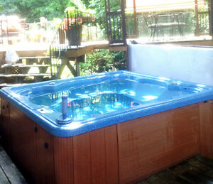HOT TUB w NEW SPA PACK, NEW HEATER,NEW JETS + CHEMICALS INCLUDED