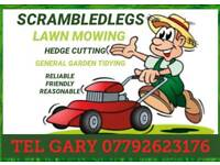 Lawn Mowing hedges Overgrown Gardens Grass Cutting