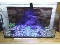FISH TANK / TURTLE TANK / TERRAPINS ETC / GLASS TANK