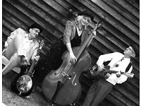 Delta Beltas 1920's/30's Hokum blues & ragtime - parties, events, weddings