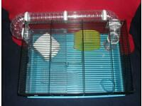 Baby Syrian hamster with 2 level cage and accessories.