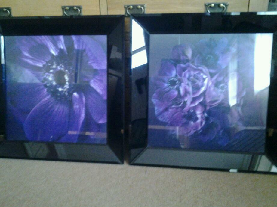 """Next large glass pictures were £150 26"""" x26"""""""