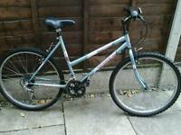 LADIES TERRAIN DREAM, MOUNTAIN BIKE, 26, ALLOY WHEELS,