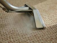 *Caret steam clean* - profession carpet and upholstery cleaning
