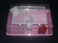 Baby hamster with cage