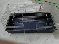 Large rabbit indoors cage