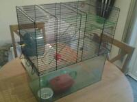 Luxury hamster/gerbil cage