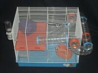 Hamster cage with white baby Syrian hamster