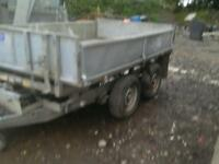 Ifor williams electric tipping trailer 8x 5 no vat