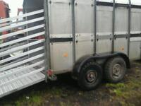 Ifor williams live stock trailer with sheep decks 10x5.6 no vat