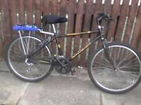 Adult Mountain bike 26""