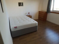 Lodger wanted for large double room - bills included
