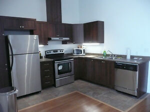 Superb loft, 2 bd, South-West, Griffintown, 1 year free parking