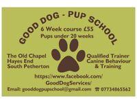 GOOD DOG Pup School - Puppy Head start Class