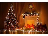 Real Christmas Trees with FREE DELIVERY to your door from £28