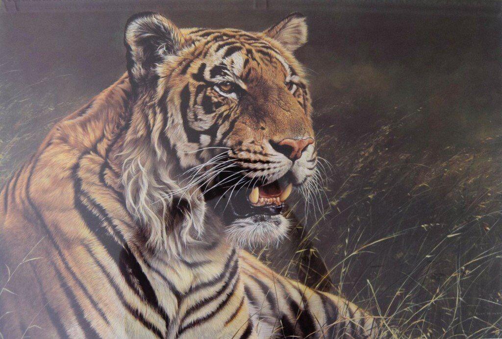 British animal artist alan m hunt: limited edition wildlife art.