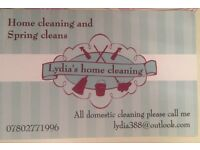 Lydia's cleaning service
