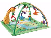 Fisher-Price Melodies and Lights Deluxe Gym