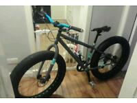 Bike fat bike