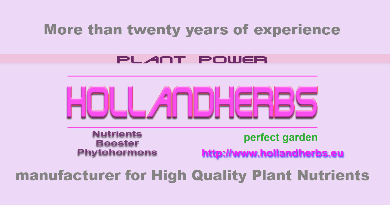Hollandherbs