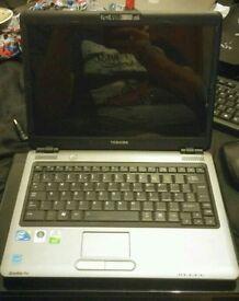 Toshiba Satellite Pro U400 Laptop - Boots to Bios