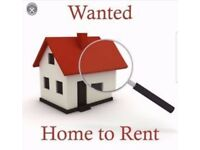 Looking for 3/4 bedroom house to rent , howdale road /spring cottage area