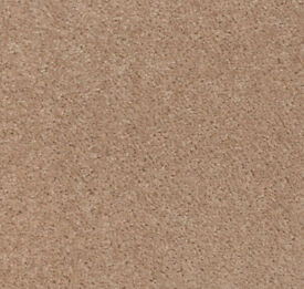 Beige Living Room Carpet 525cm x 400cm - Immaculate