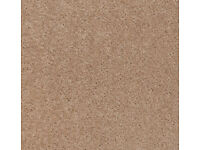 Beige Living Room Carpet 525cm x 400cm - Immaculate