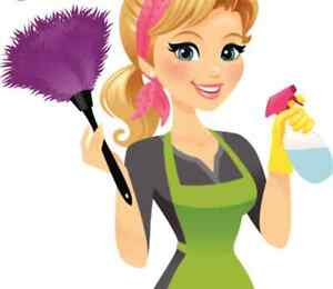 Cleaning services and more! Cambridge Kitchener Area image 1