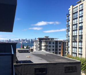 Beautiful 1br+den, 690 sf in LoLo with 2 parking and 2 storage