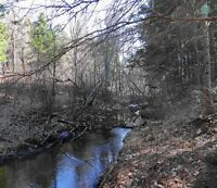 Partially Cleared Lot with Brook