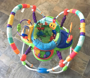 Baby Einstein™ Activity Jumper Special Edition