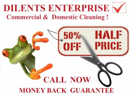 Parramatta  Commercial & Domestic  Cleaning ! Parramatta Parramatta Area Preview