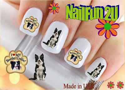 Nail Art #113 DOG BREED Border Collie Love Paw WaterSlide Nail Decals Transfers Border Art Transfer