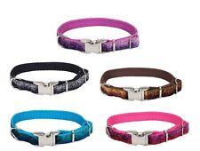 SPARKLES Adjustable Dog Collar - 3 sizes - 5 colors - Metal Buckle dog collars