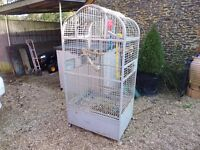 parrot cage for indoor use