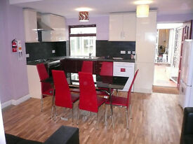 Studio (Room, Ensuite, Own Kitchen) In an Immaculate Professional Houseshare £95 pw All Bills Inc