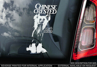 Chinese Crested Dog - Car Window Sticker - Dog Sign -V02