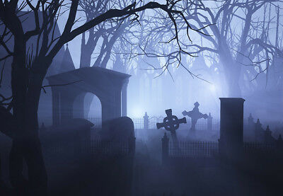 Halloween Horror Grave Photography Background Polyester Photo Backdrop 7x5FT](Horror Halloween Background)