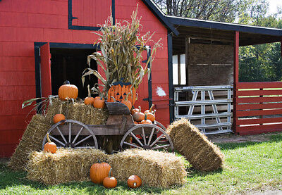 Vinyl Backdrop Studio Photo Background Prop 10X8FT Halloween Scene Fall Red Barn - Halloween Photo Studio