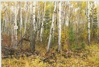 Grand Pines Golf Course Building Lot